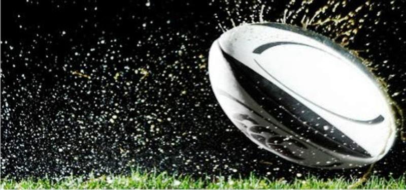 WinDaddy - Rugby